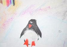 Пингвин - берегите его, он в красной книге